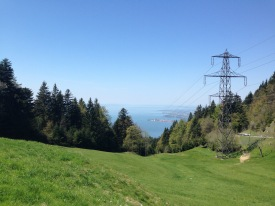 view from the Pfänder over the lake of Constance